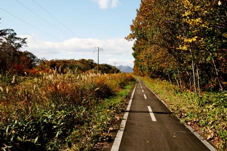 支笏湖への道