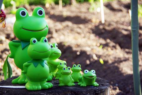 庭のカエルちゃんたち