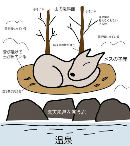 鹿の説明イラスト
