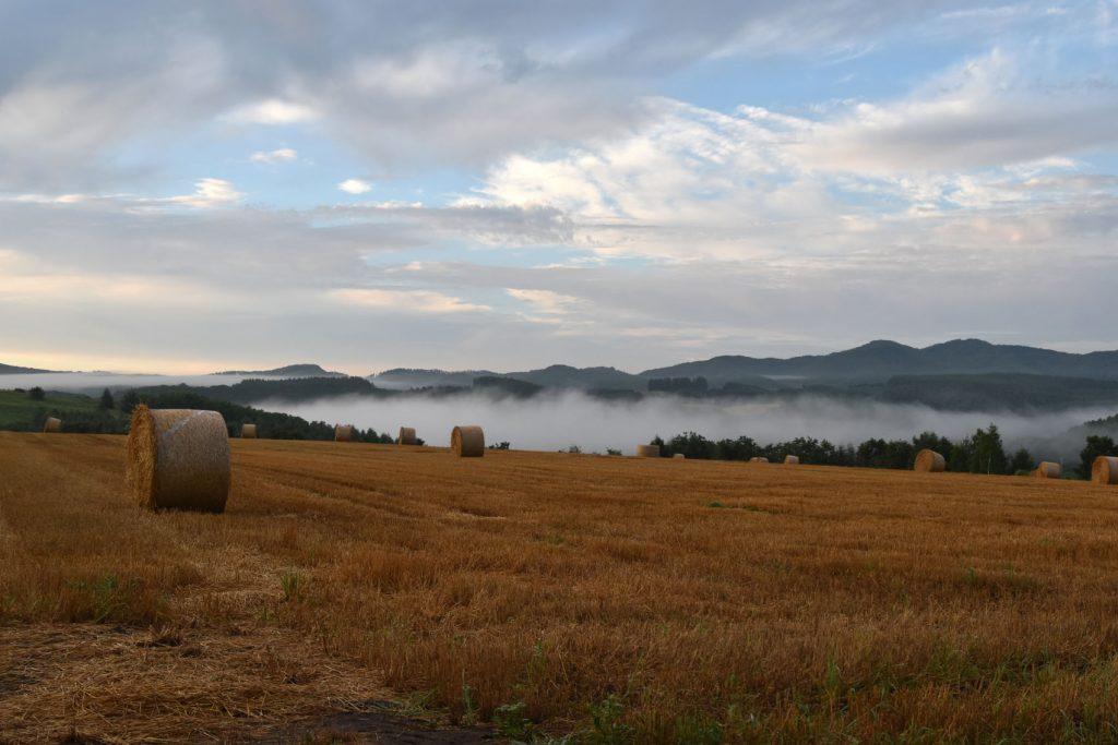 仁頃の牧草ロールと朝霧