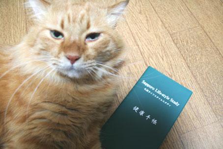 健康手帳と猫