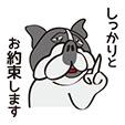 リジェクト 犬1