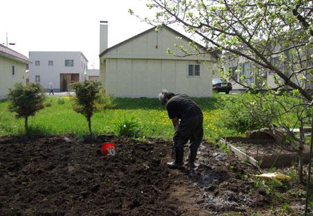 土壌改良に精を出す筆者
